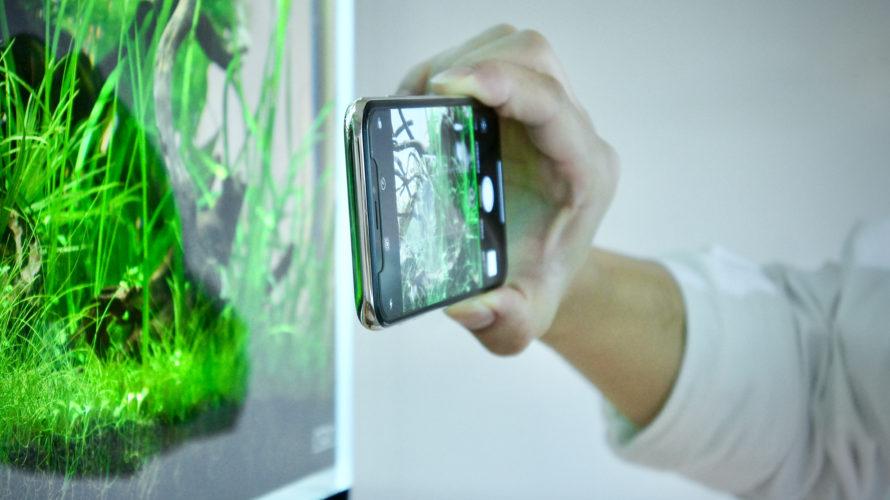徹底分析! インスタ映えするアクアリウムの撮り方 水族館にも応用可!